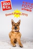 BeachParty_Zoo_Co_2015_07-260