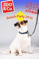 BeachParty_Zoo_Co_2015_07-263