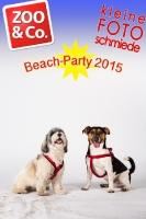 BeachParty_Zoo_Co_2015_07-268