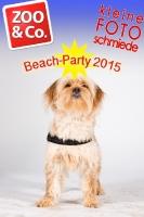 BeachParty_Zoo_Co_2015_07-274