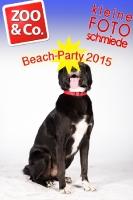 BeachParty_Zoo_Co_2015_07-277