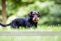 Rogenwieser_2018_07_035